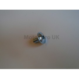 Side panel/raceplate screws 6mm