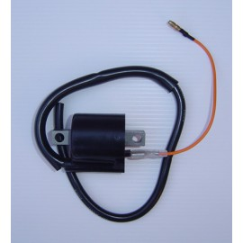 Ignition Coil 6V (Single Wire)